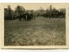 image-033-1916