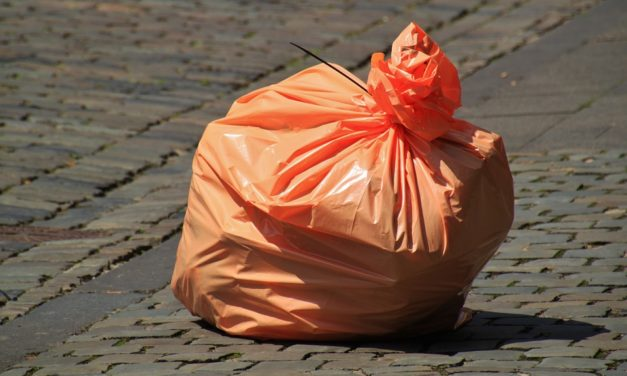 Collecte des déchets : reprise du tri sélectif