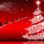 Fête du sapin samedi 12 janvier