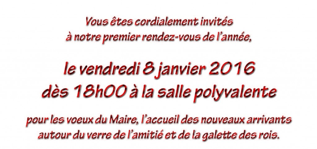 voeux2016_Page_2