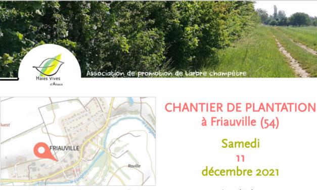 Chantier «plantations» le 11 déc